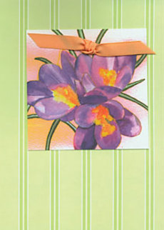 Crocus Green Stripes