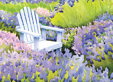 Sitting in Lavender
