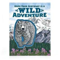 Wild Bear Birthday Sticker Card