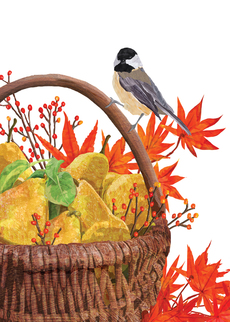 Chickadee and Basket