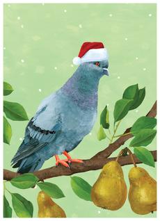 Pigeon Pears