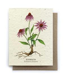 Echinacea Plantable Seed Card