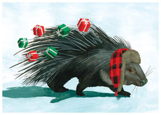 Porcupine Presents