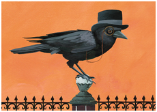 Dapper Crow