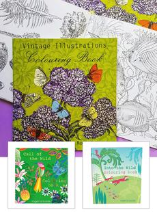 Roger La Borde Coloring Books
