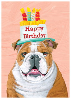 Bulldog Birthday