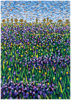 Wildflowers #4