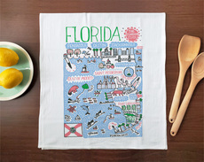 Statescapes: Florida Towel