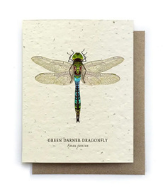 Dragonfly Plantable Seed Card