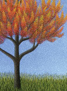 Autumn Glory Mini