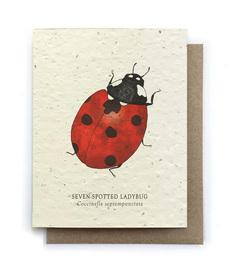 Ladybug Plantable Seed Card