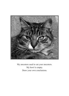 Cat Ancestors