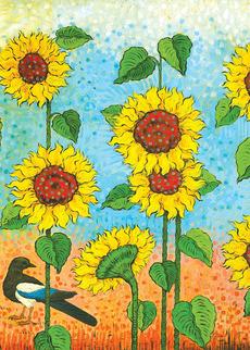 Sunflower Magpie