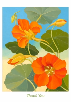 Siri Schillios Nasturtium Thank You Notes