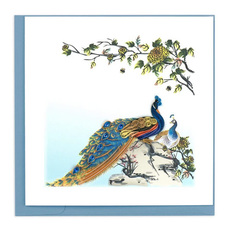 Peacock Quilling Card