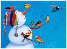 Birdies & Snowman