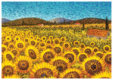Sunflowers, Umbria