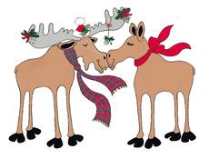 Kiss-Moose