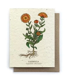 Calendula Plantable Seed Card