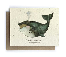 Ocean Whale Plantable Seed Card