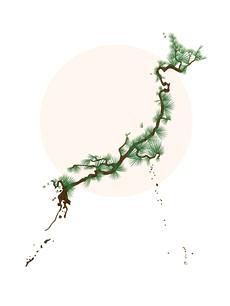 Japan in Pine (Blank)