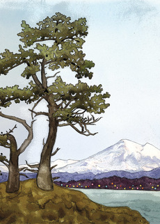 Tree with Mountain View