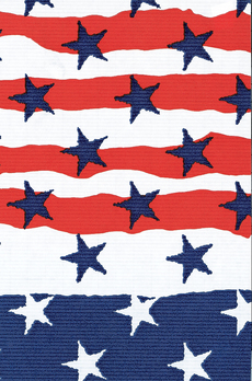 Stars and Stripes Wrap
