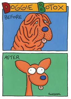 Doggie Botox