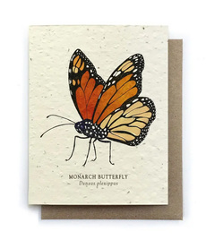 Monarch Butterfly Plantable Seed Card