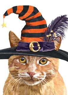 Halloween Tabby