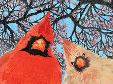 Quirky Cardinal Birds