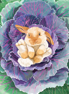 Cabbage Bunny (Easter)