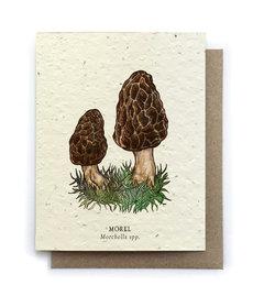 Morel Mushrooms Plantable Seed Card