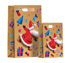 Santa's Beard Medium Bag