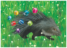 Birthday Porcupine
