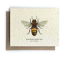 Honey Bee Plantable Seed Card