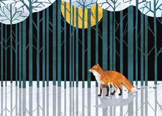 Enchanted Forest Fox