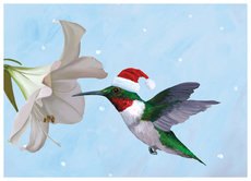 Holiday Hummingbird