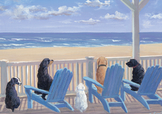 Dogs on Deck Chairs Boxed Notecards