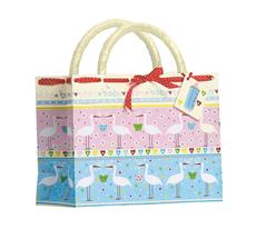Bambini Baby Bag