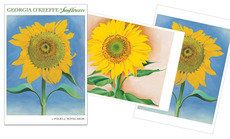 Georgia O'Keeffe Card Folio