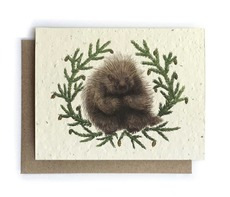 Porcupine and Fir Plantable Seed Card