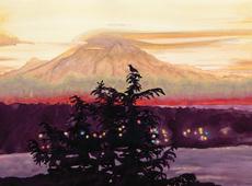Bird's View of Mt Rainier