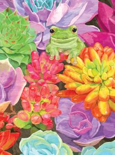Succulents Frog