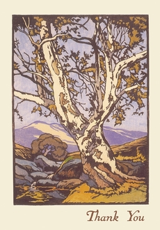 William S. Rice: Western Sycamore Thank You Notes