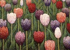 Tulips Mini