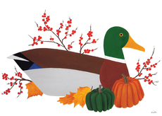 Mallard in Autumn