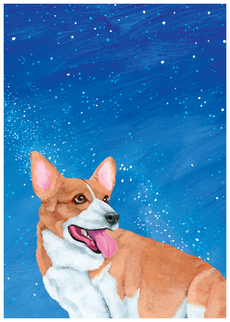 Corgi Sky Birthday
