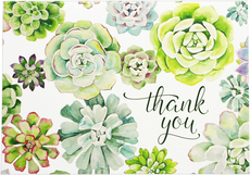 Succulents Boxed Thank You Notes