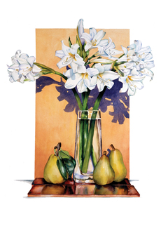 White Lilies & Pears